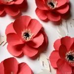 Petite fleur (Charles Aznavour)