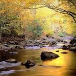 Tečie voda skokom,  slatinským potokom