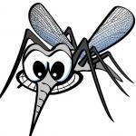 Chcel sa komár žeňiťi