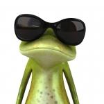 Ja som žabka