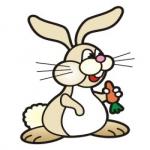Sedí zajac
