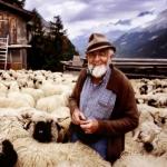 Pásli ovce valasi